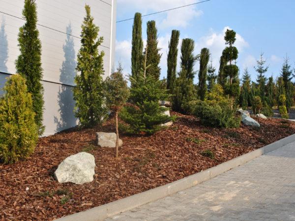 Obsada ogrodu w Bielsku-Białej